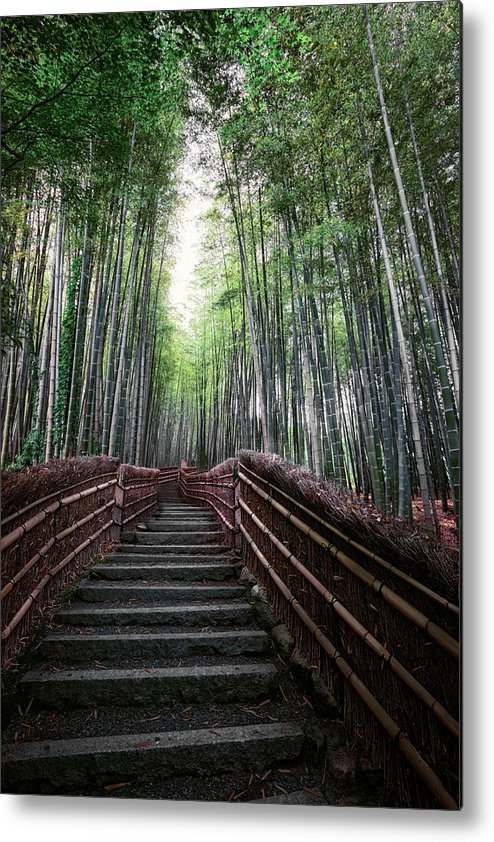 Bamboo Metal Print featuring the photograph Bamboo Forest Of Japan by Daniel Hagerman