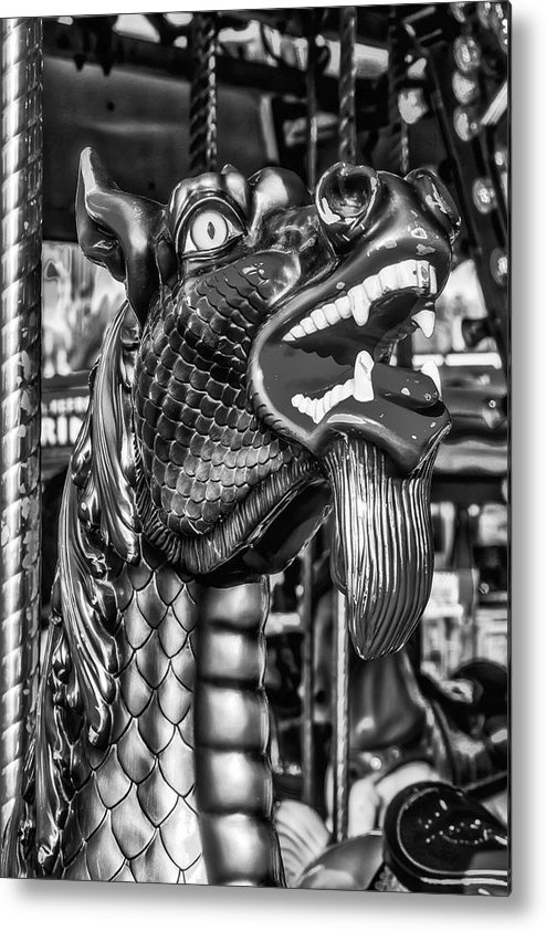 Serpent Metal Print featuring the photograph Bearded Dragon Ride Black And White by Garry Gay