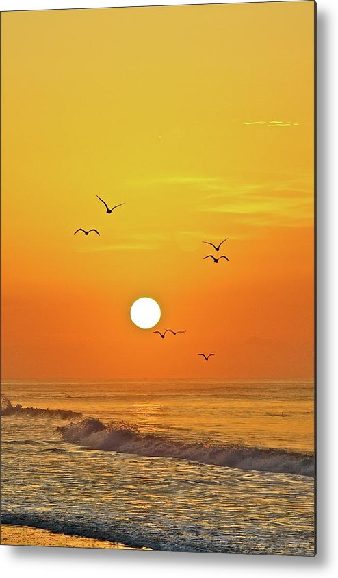 Beach Metal Print featuring the photograph Beautiful Morning by Diana Hatcher