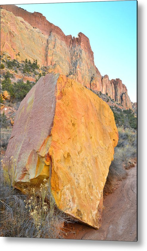 Grand Staircase Escalante National Monument Metal Print featuring the photograph Boulder Color by Ray Mathis
