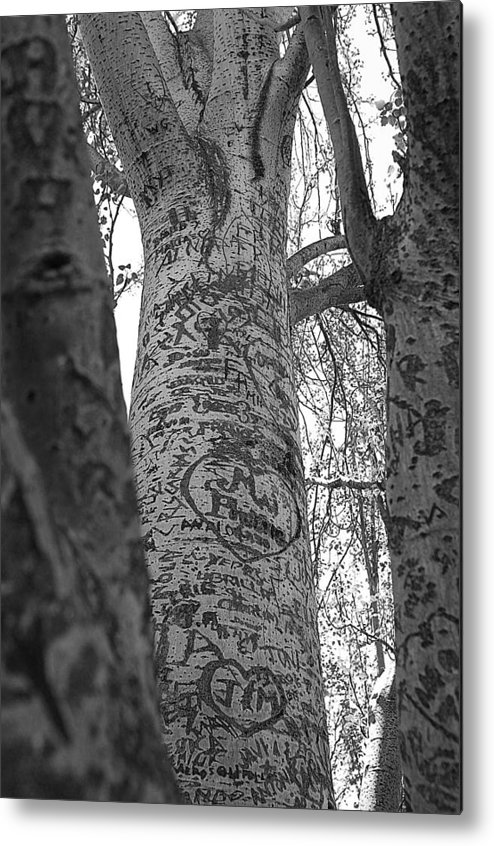 Jez C Self Metal Print featuring the photograph Carved Love by Jez C Self