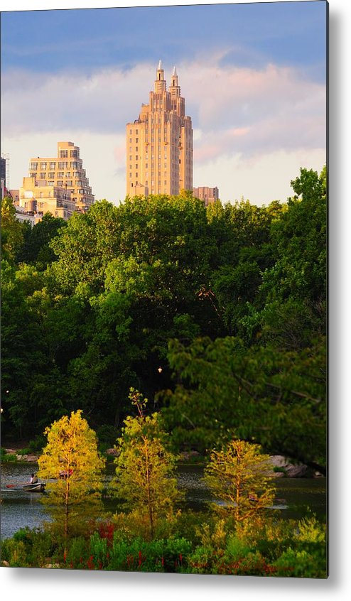 Central Park Metal Print featuring the photograph Central Park 7503 by PhotohogDesigns