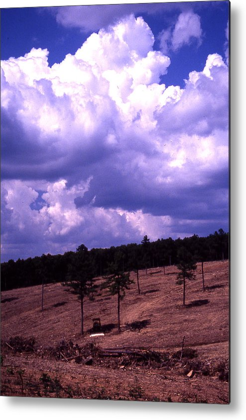 Metal Print featuring the photograph Clear-cut by Curtis J Neeley Jr