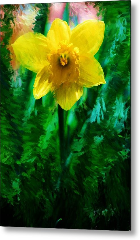 Abstract Metal Print featuring the photograph Daffy Dill by David Lane