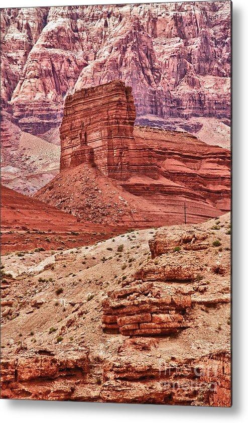 Scenic Metal Print featuring the photograph Desert Scene L by Hideaki Sakurai