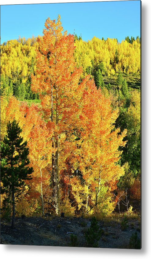 Colorado Metal Print featuring the photograph Fall Hillsides Above Dillon Reservoir by Ray Mathis