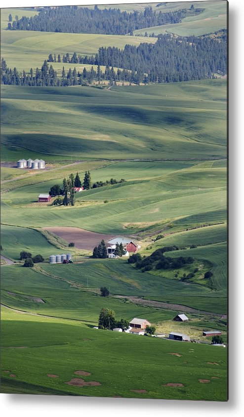 Fertile Metal Print featuring the photograph Farmland In Eastern Washington State by Carl Purcell