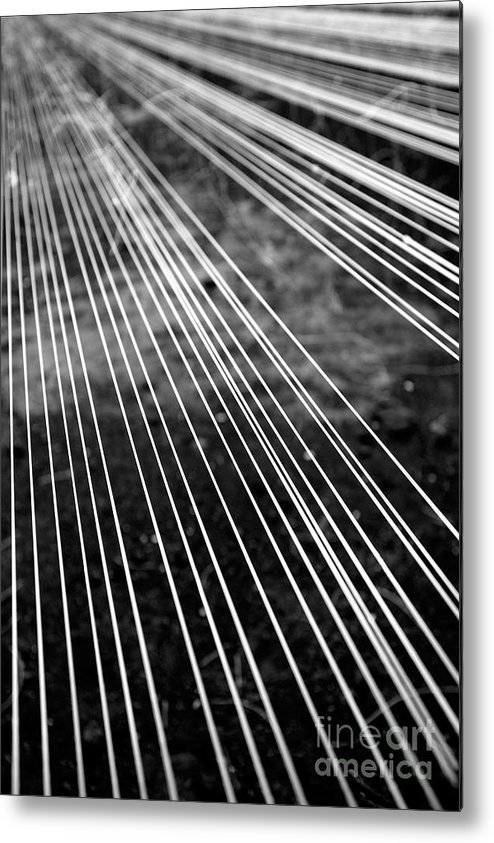 Abstract Metal Print featuring the photograph Fishing Lines by Gaspar Avila