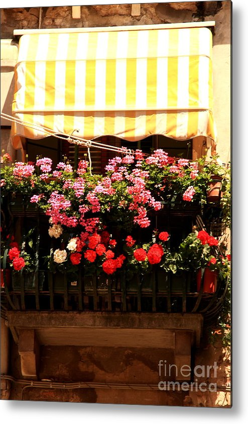 Flowers Metal Print featuring the photograph Flowers And Awning In Venice by Michael Henderson