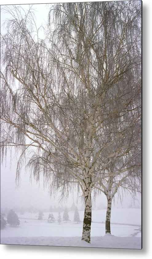 Nature Metal Print featuring the photograph Foggy Morning Landscape 12 by Steve Ohlsen