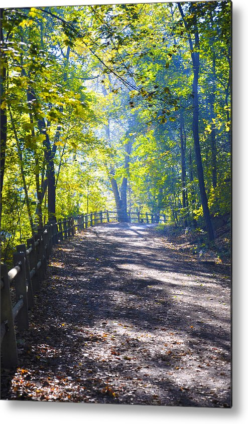 Wissahickon Metal Print featuring the photograph Forbidden Drive - Philadelphia by Bill Cannon