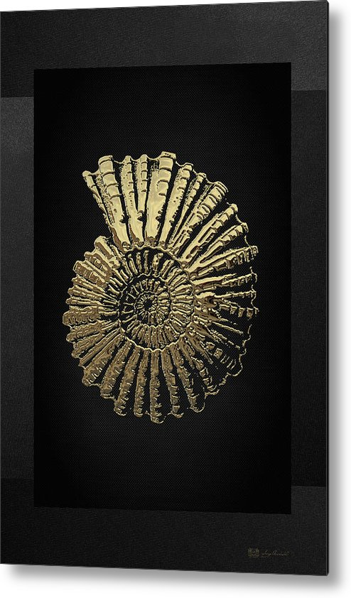 'fossil Record' Collection By Serge Averbukh Metal Print featuring the digital art Fossil Record - Golden Ammonite On Black by Serge Averbukh