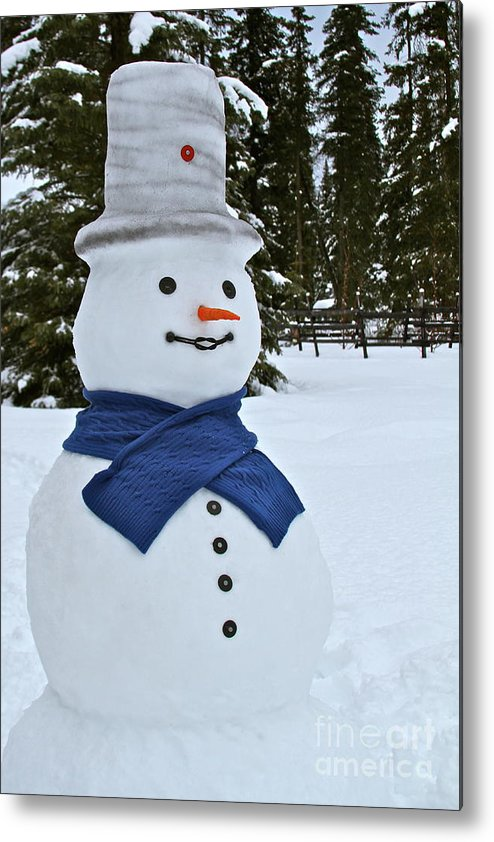 Snow Man Metal Print featuring the photograph Frosty Alaskan by Rick Monyahan