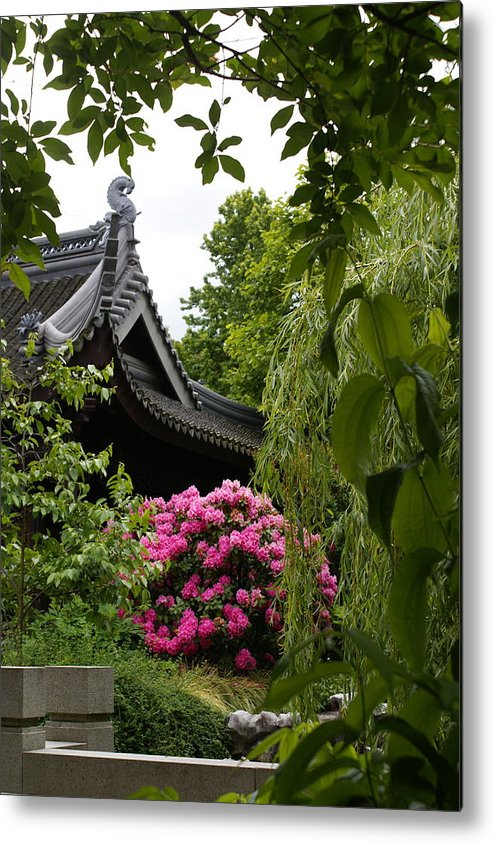 Chinese Garden Metal Print featuring the photograph Garden View by Sonja Anderson