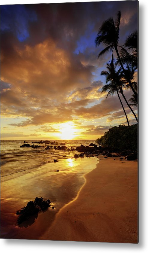 Glorious Metal Print featuring the photograph Glorious by Chad Dutson