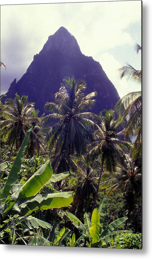 Caribbean Metal Print featuring the photograph Grand Piton by Carl Purcell