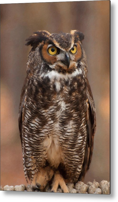 Great Horned Owl Metal Print featuring the digital art Great Horned Owl Digital Oil by Chris Flees