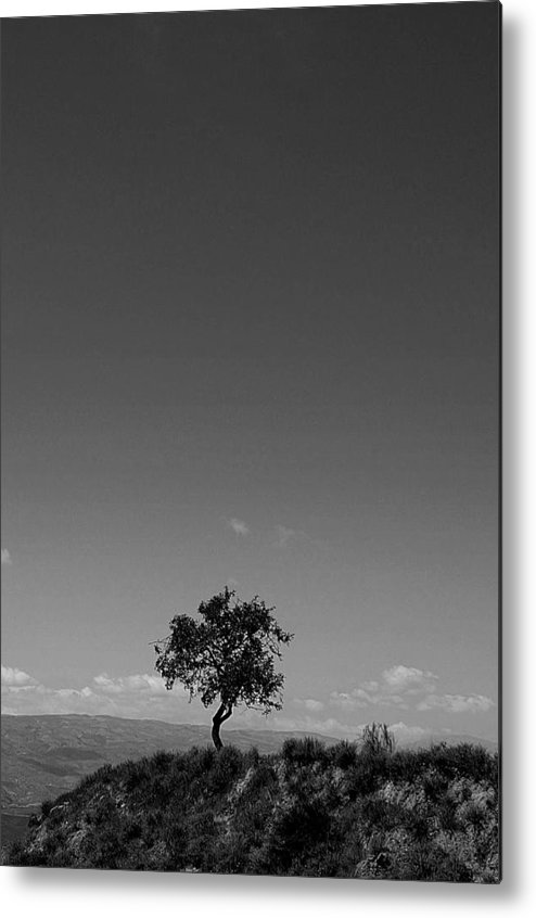 Jez C Self Metal Print featuring the photograph Happy On My Own by Jez C Self