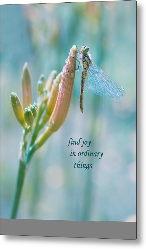 Metal Print featuring the photograph Joy In Ordinary Things by Terrie Sizemore