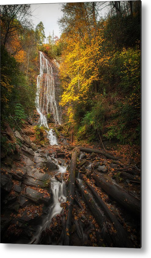 Fall Metal Print featuring the photograph leaves on Mingo by Jennifer Luzio