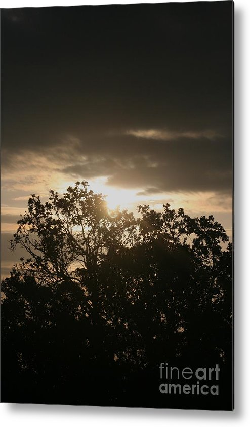 Light Metal Print featuring the photograph Light Chasing Away The Darkness by Nadine Rippelmeyer