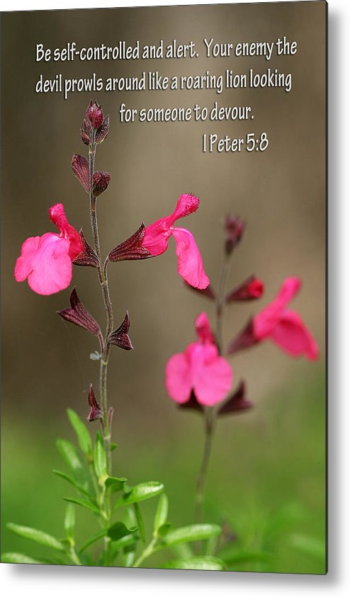 Scripture Metal Print featuring the photograph Little Pink Wildflowers With Scripture by Linda Phelps