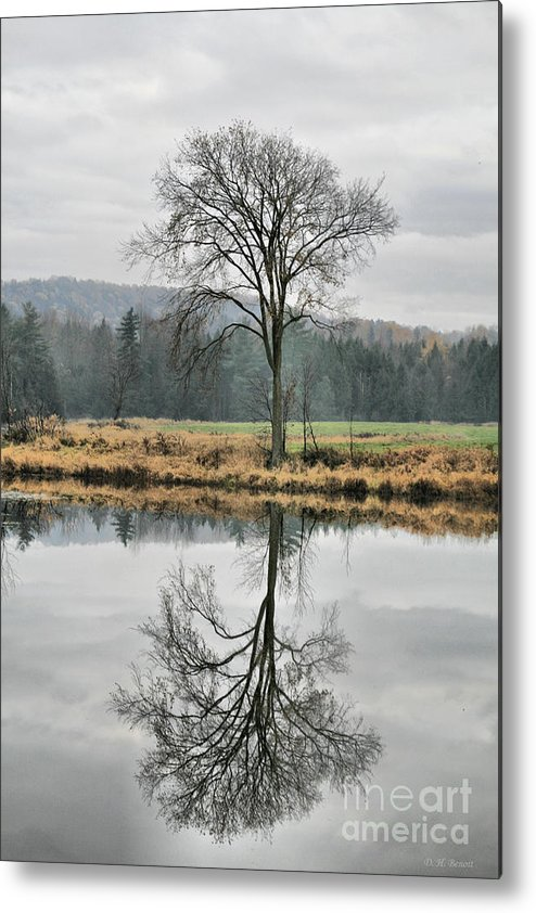 Reflections Metal Print featuring the photograph Morning Haze And Reflections by Deborah Benoit