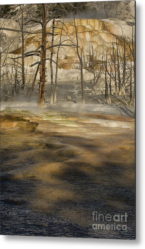 Yellowstone Metal Print featuring the photograph Morning Light On Mammoth Terrace by Sandra Bronstein