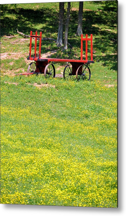Landscapes Metal Print featuring the photograph None Of Your Red Wagon by Jan Amiss Photography
