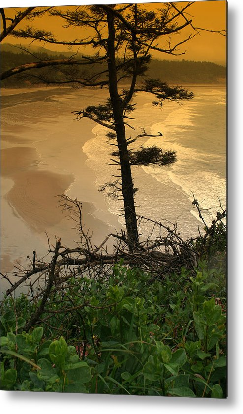 Oregon Metal Print featuring the photograph Oregon Coast Oo44 by Mary Gaines