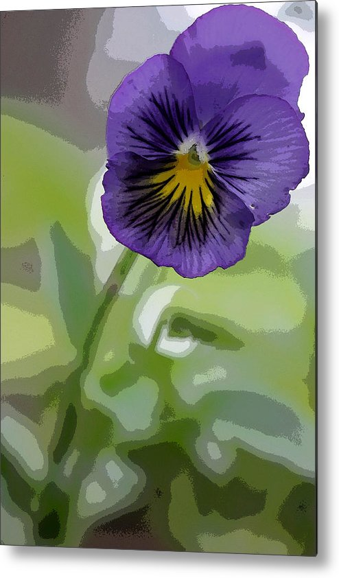 Summer Flower Metal Print featuring the photograph Pansy by David Bearden