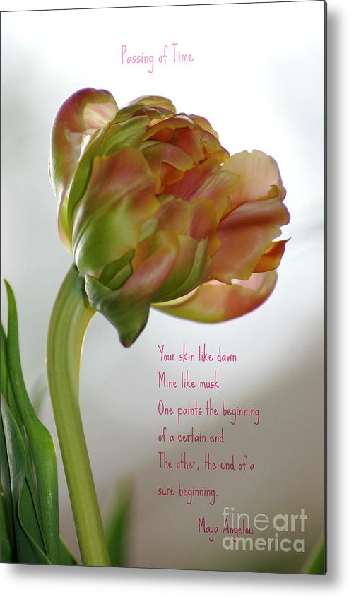 Poem Metal Print featuring the photograph Passing Time by Donna Bentley