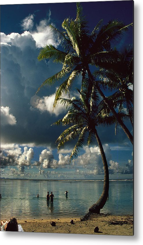 Island; Paradise; Beach; Palms; Palm; Palm Trees; Calm Water; Tropical; Swimmers; Vacation; Ideal; T Metal Print featuring the photograph Pigeon Point On Tobago by Carl Purcell