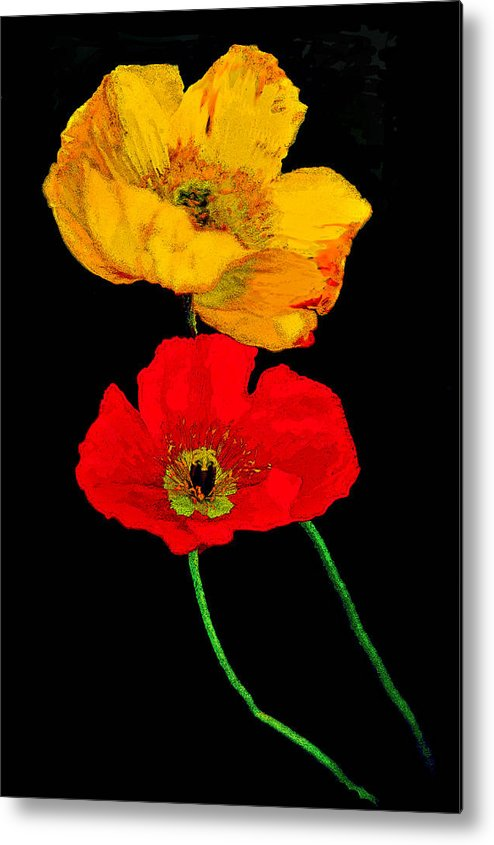 Poppies Metal Print featuring the photograph Poppies On Black by Lynn Andrews