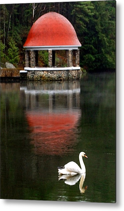 Swan Metal Print featuring the photograph Quiet Afternoon by William Bray