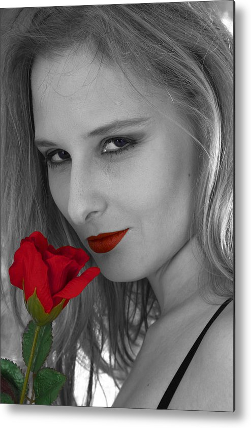 Rose Metal Print featuring the photograph Red Rose by Pit Hermann