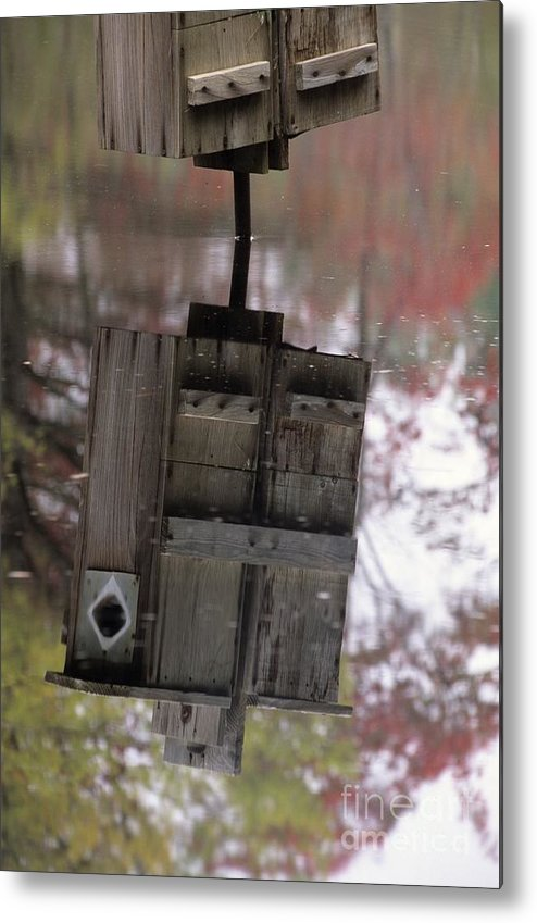 Wood Duck Metal Print featuring the photograph Reflection Of Wood Duck Box In Pond by Erin Paul Donovan