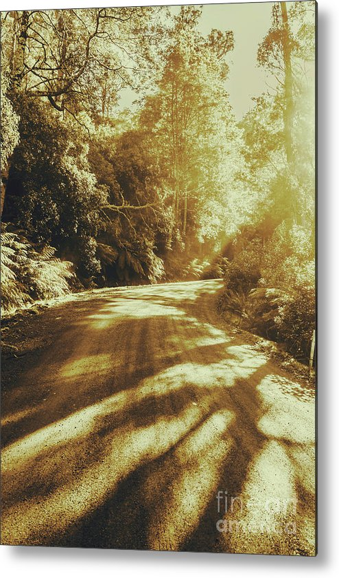 Rainforest Metal Print featuring the photograph Retro Rainforest Road by Jorgo Photography - Wall Art Gallery