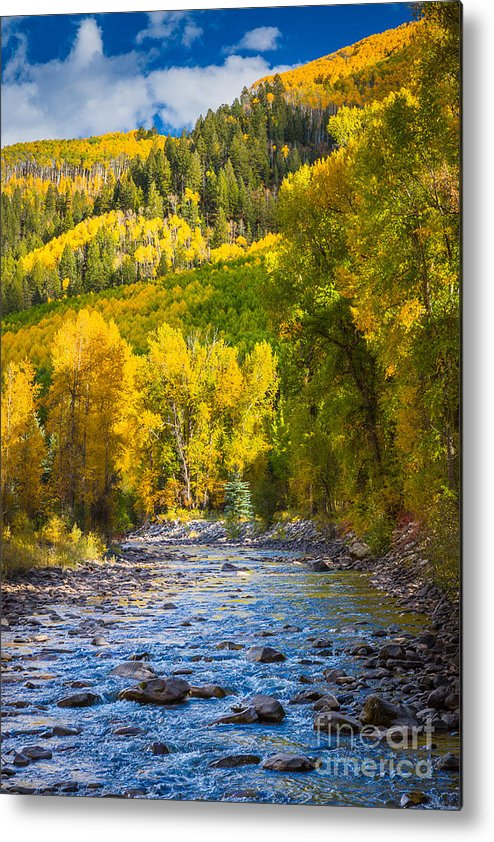 America Metal Print featuring the photograph River And Aspens by Inge Johnsson