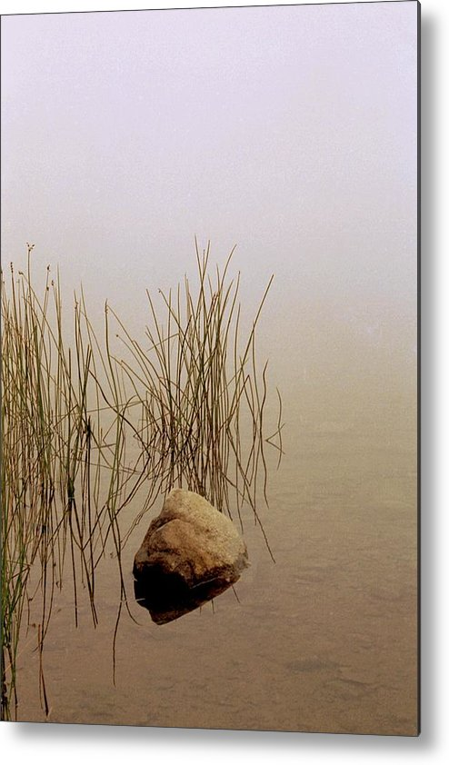 Calm Metal Print featuring the photograph Rock And Reeds On Foggy Morning by Roger Soule