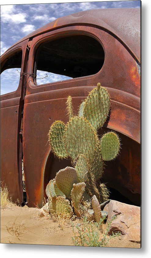 Southwest Metal Print featuring the photograph Route 66 Cactus by Mike McGlothlen