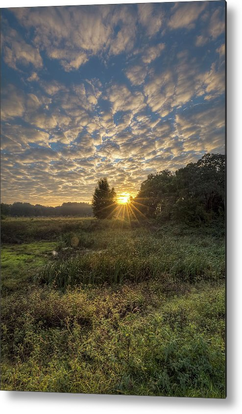 Sky Metal Print featuring the photograph Scalloped Morning Skies by Ronald Kotinsky