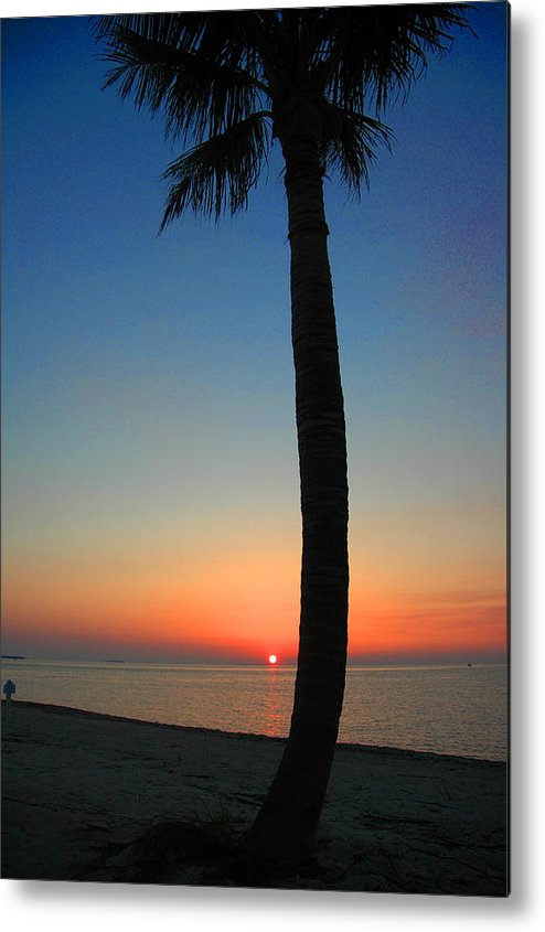 Photography Metal Print featuring the photograph Single Palm And Sunset by Susanne Van Hulst