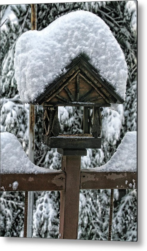 Snowy Metal Print featuring the photograph Snowy Feeder by Bonnie Bruno