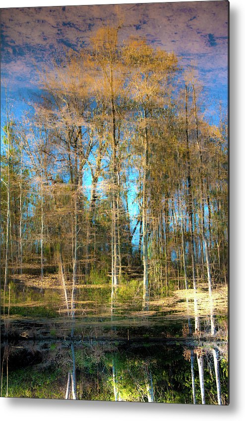 Water Metal Print featuring the photograph Spring Reflection by Kimberly McKinley