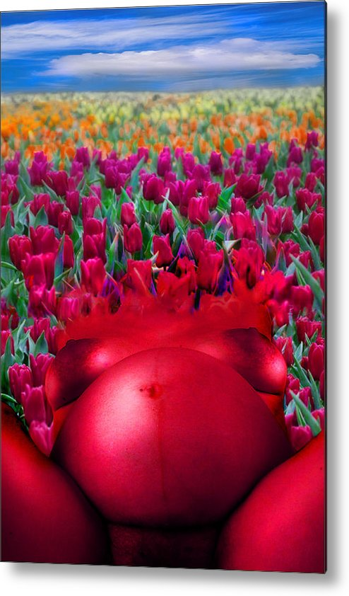 Metal Print featuring the photograph Spring by Zygmunt Kozimor