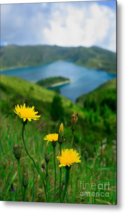 Caldera Metal Print featuring the photograph Springtime In Fogo Crater by Gaspar Avila
