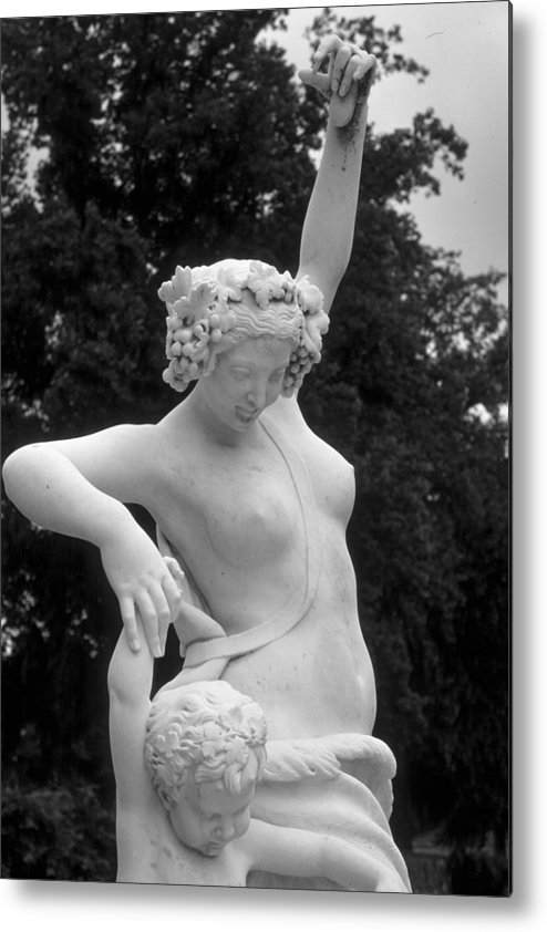 Statue Metal Print featuring the photograph Statue London England Park by Douglas Pike
