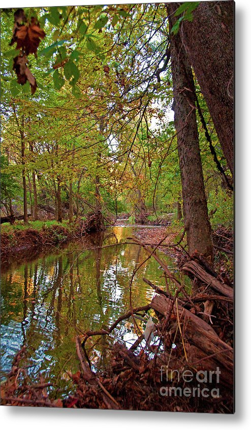 Water Metal Print featuring the photograph Still Waters In The Evening by PhyllisAnn Mains