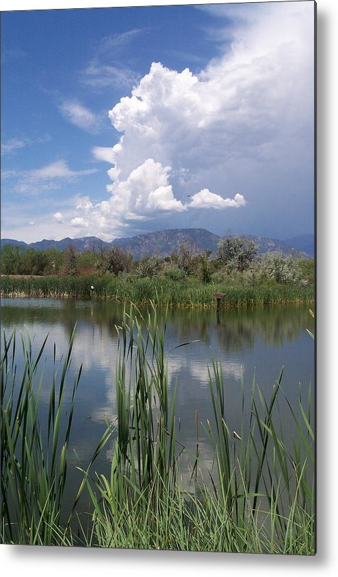 Landscape Metal Print featuring the photograph summer Daze by Sarah Bauer